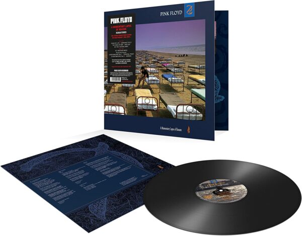 Vinile A Momentary Lapse of Reason Cover Album Pink Floyd